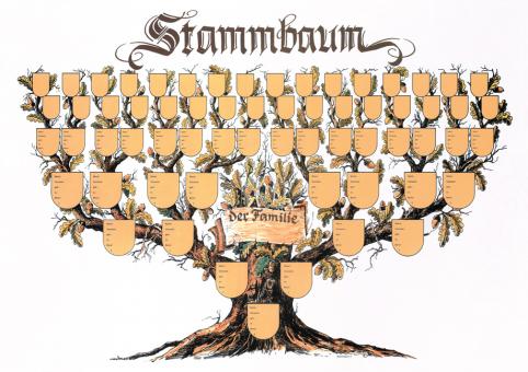 """Schmuckbild """"Stammbaum"""" (60 x 42 cm)"""